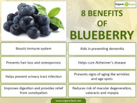 BlueberryFacts